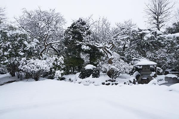 岩手 冬 雪景色